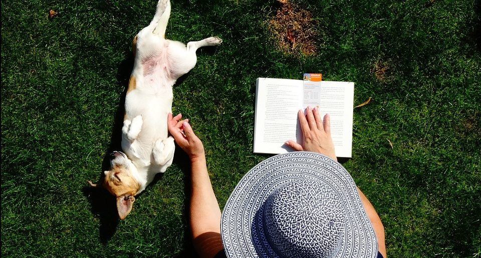 Libros dogfriendly para este otoño