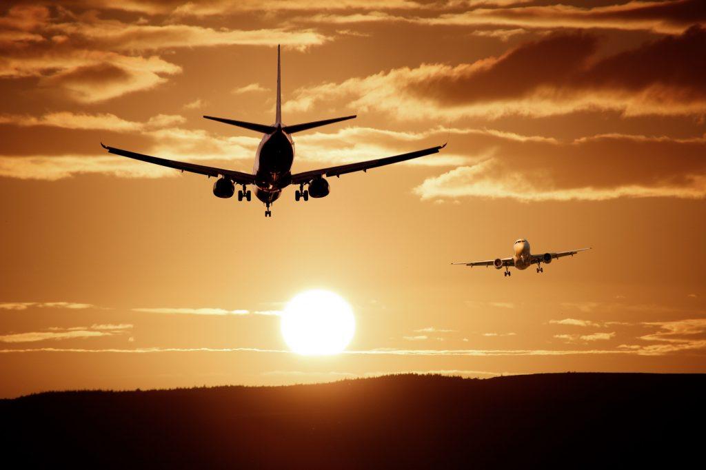 6 consejos para viajar en avión con tu perro
