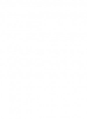 insignia-google-5-estrellas